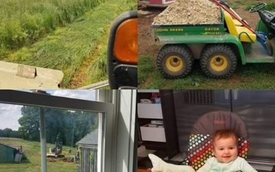 This Week on the Farm …