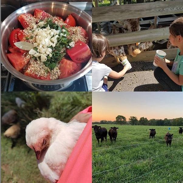 Round' the farm