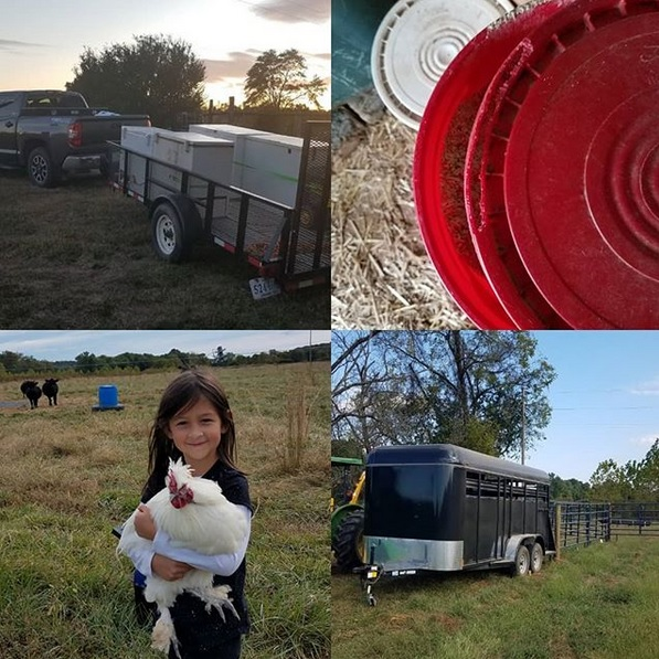 This Week 'Round The Farm – 10/21/2019