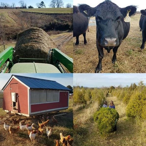 Around the farm