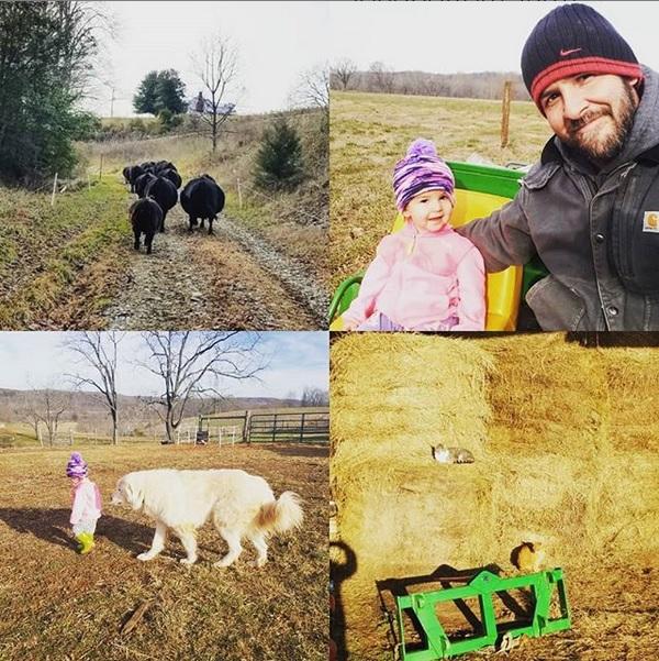 farm happenings