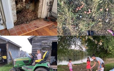 This Week 'Round The Farm – 10/25/2020