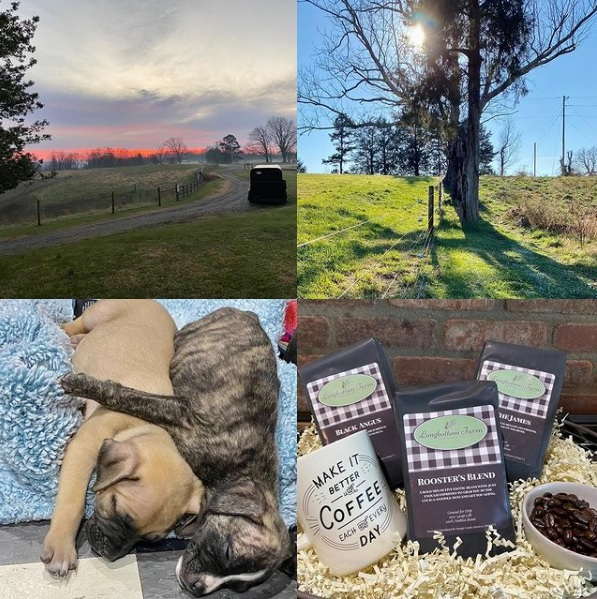 This Week 'Round The Farm – 12/13/2020