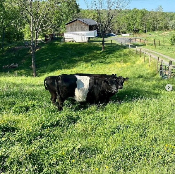 This Week 'Round The Farm – 05/03/2021